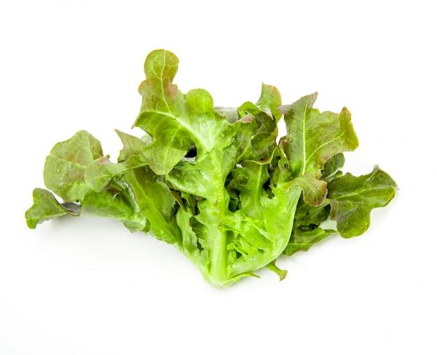 Салат на белом изолированные