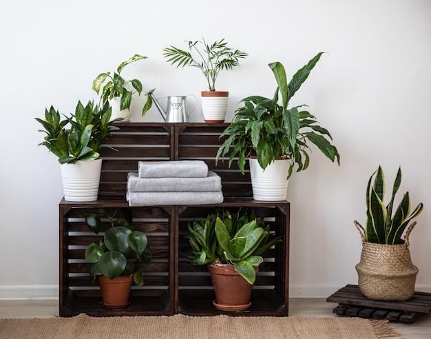 木製の棚に設置されたバスルーム