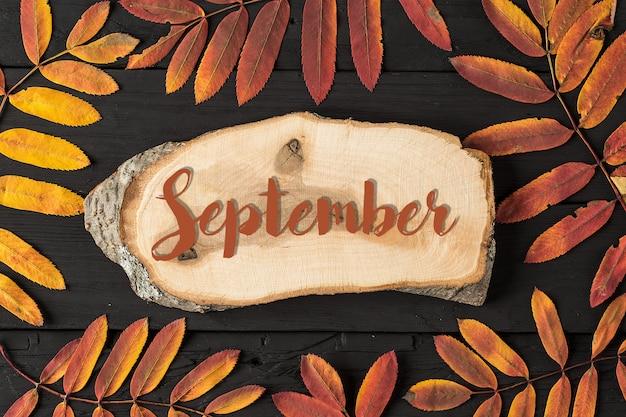 秋の花と秋の季節のフラットレイアウト