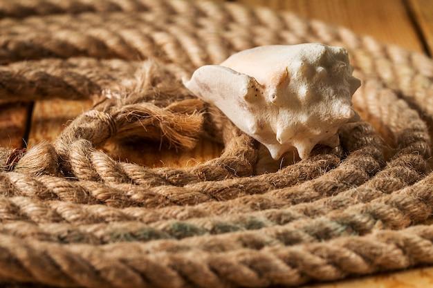 Раковины и веревки на деревянном фоне