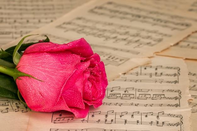 赤いバラの花と音楽ノートシート