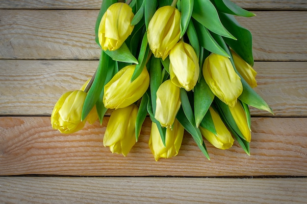 Красивые желтые тюльпаны на деревянном фоне