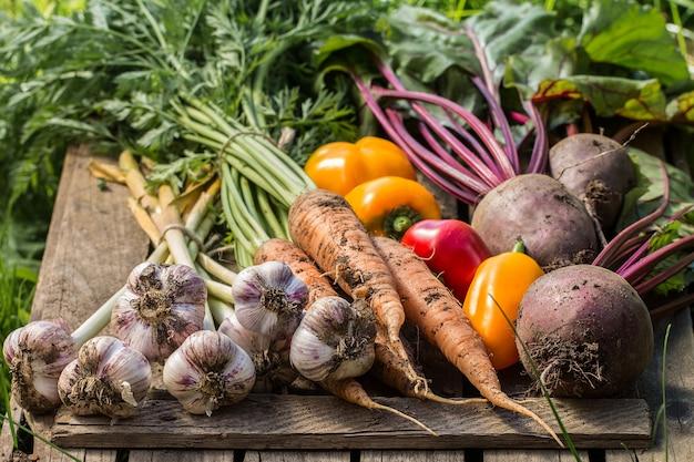 木の表面に健康的な有機野菜