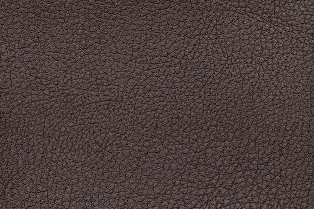 茶色の革テクスチャ背景。クローズアップ写真。爬虫類の皮。
