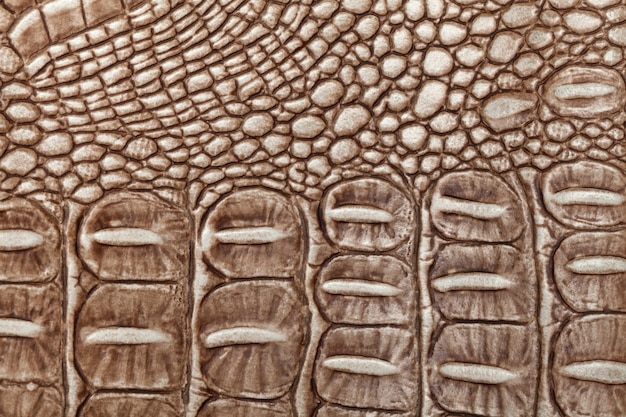 茶色の革テクスチャ背景。クローズアップ写真。爬虫類の皮膚。