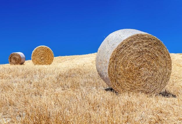 イタリア、トスカーナの田園風景。丘と野原の俵と干し草。