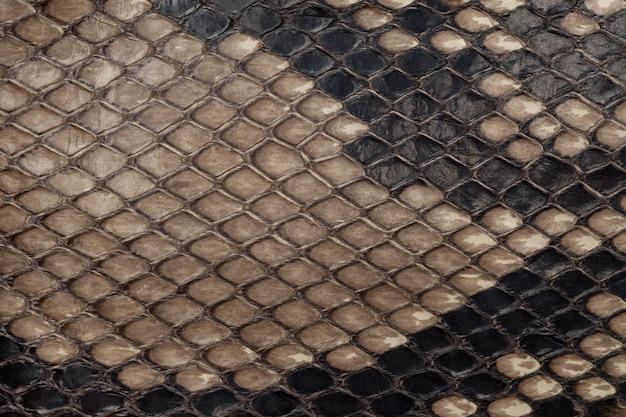 本物のヘビ革。革のテクスチャ背景。クローズアップ写真。