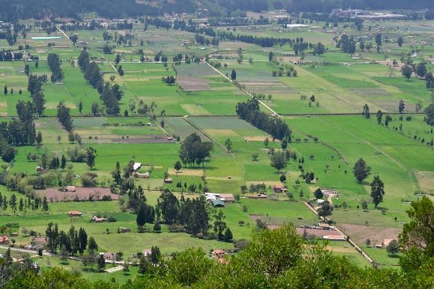 上記の自然平野木々の緑