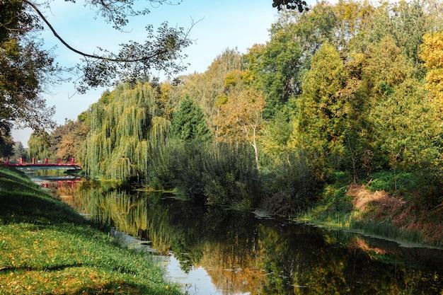 美しい風景。秋の公園。
