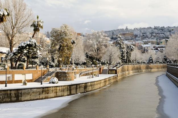 Вид деревьев со снегом вдоль реки