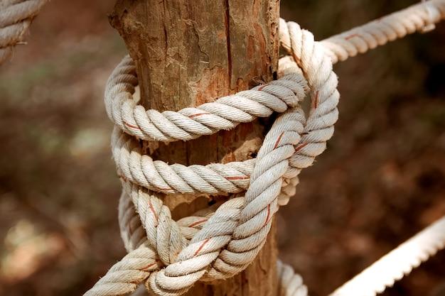 ロープで結びます。トーンの写真