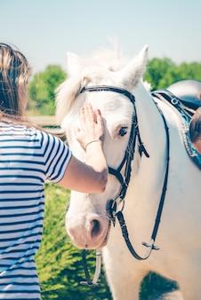 若い女性は美しい白い馬を愛撫します。友情、パートナーシップ、信頼の概念。