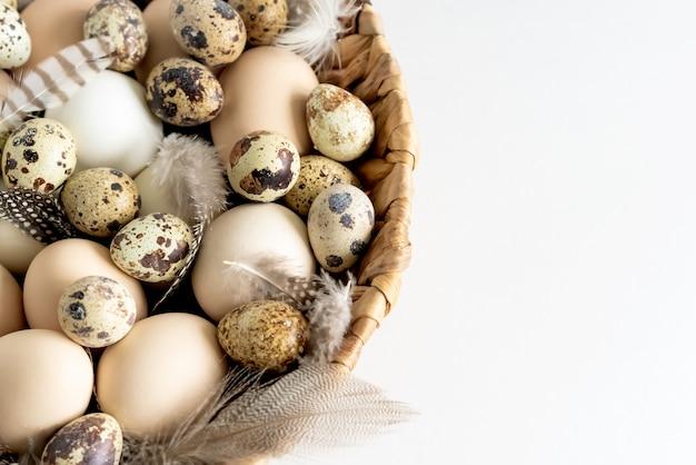 Перепелиные пасхальные яйца и перья на белом фоне.