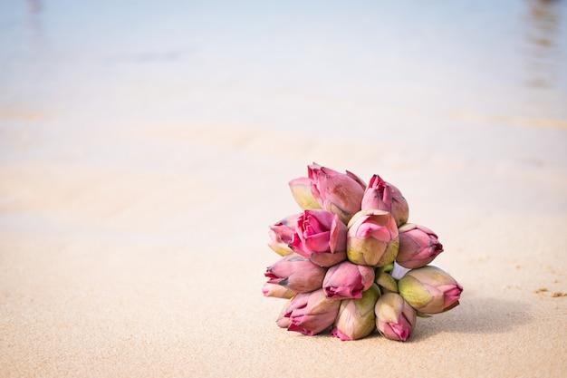 ピンクの蓮の海の海岸の花束をクローズアップ