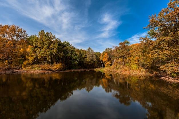 秋。鏡面と海岸に黄色の木と湖。