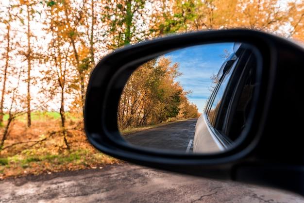 秋の森が車のバックミラーに映る