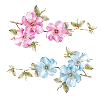 素晴らしい春の花のコレクション。