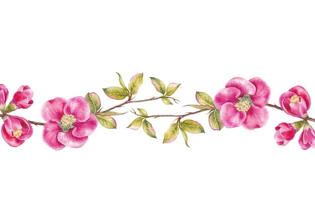 Граница из розовых цветов вишни.