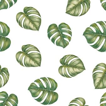 モンステラの熱帯の葉。水彩イラストのシームレスパターン。