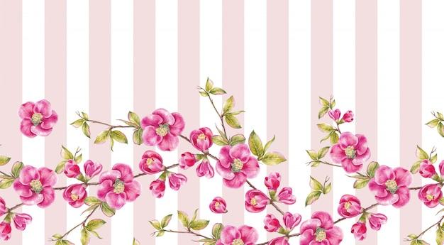 Рамка из розовых цветов сакуры.