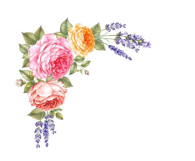 咲くバラの水彩画