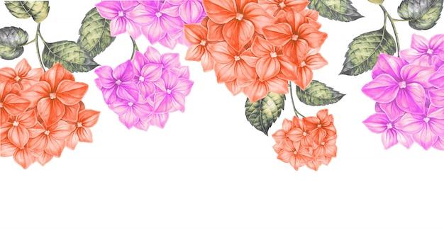 色の花のフレーム。