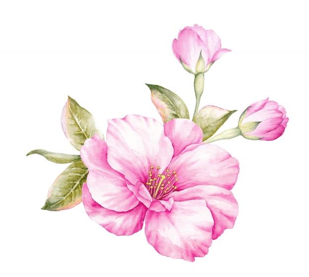 Вишневый букет цветов.