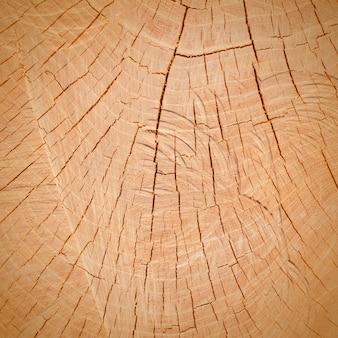 Деревянный срез, фон, текстура