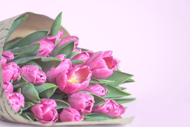 ピンクの背景にピンクの春のチューリップ