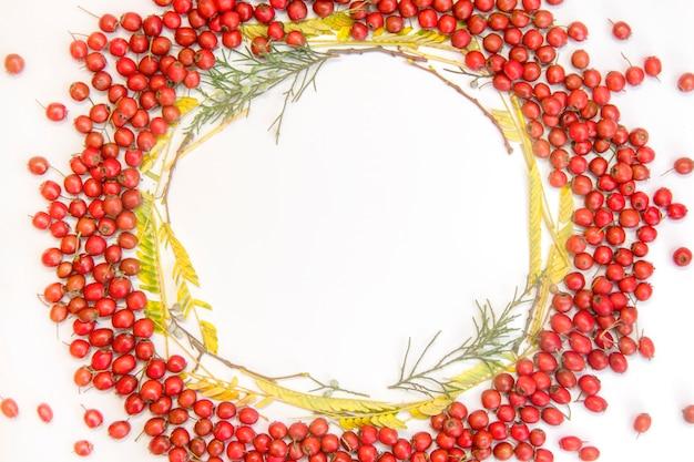 白いトーンの背景のクローズアップに赤い果実の花輪