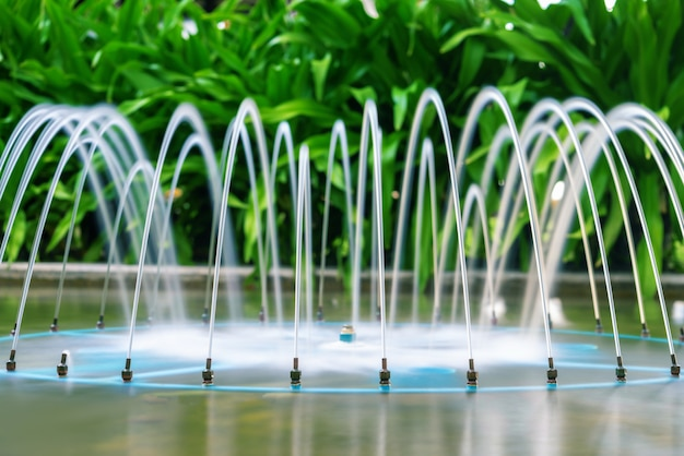 熱帯植物の美しい噴水。庭の装飾、スパ、ホテル。ランドスケープデザイン