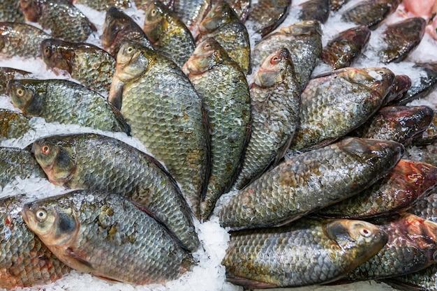 市場での販売のために飾られた氷の上の新鮮な魚市場での販売のために飾られた氷の上の新鮮な魚、美しい構図