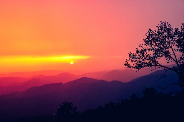 風景の木岩の指の夢