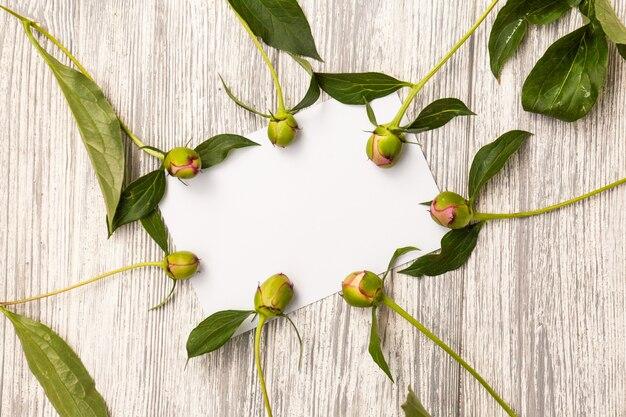 花、葉、コピースペースカード注で創造的なレイアウト。