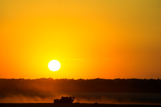 小麦の収穫作物は大きな赤い夕日の穀物、地面からの畑、黒い土を集めています。