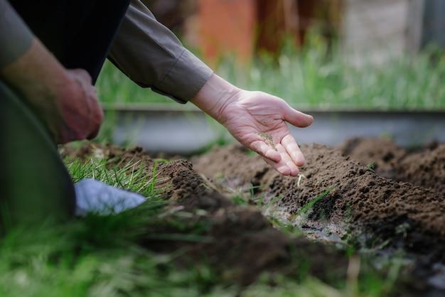 Пожилой мужчина сажает семена в саду