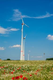 青い空を背景に風車。ヨーロッパのポピーとカモミールの畑。