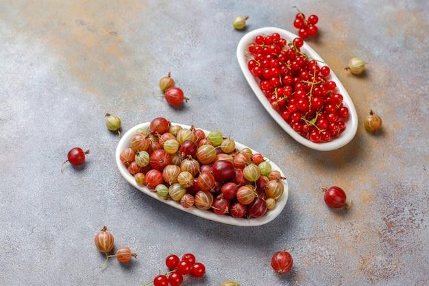 Свежий органический сладкий крыжовник и красная смородина в мисках