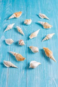 Плоская планировка летней композиции с морскими раковинами