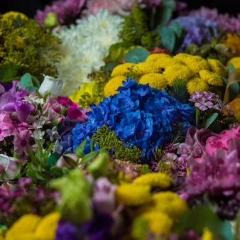 Широкий выбор живых цветов у флориста