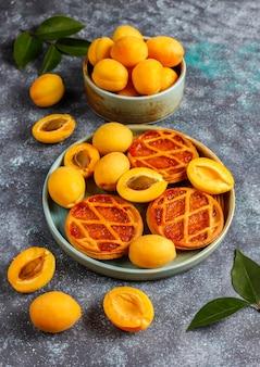 自家製の素朴なミニアプリコットのパイまたは新鮮なアプリコットフルーツのタルト。