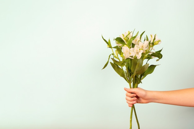 白い背景の上の女性の手で花の美しい優しい花束。