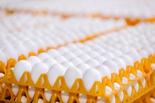 お店のトレイに卵のスタック