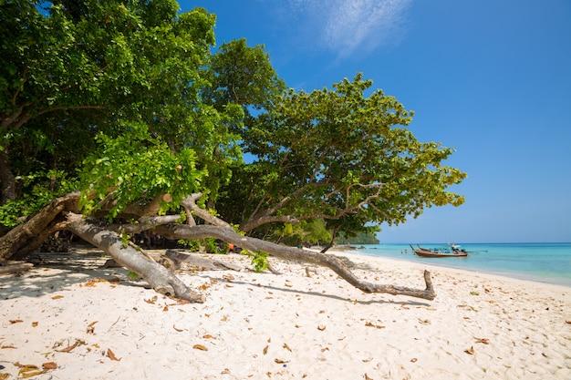 熱帯のビーチ、クラビ、タイのロングテールボート