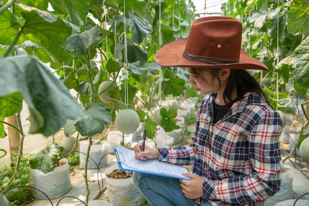 農業科学官、女性科学アシスタント。温室農業研究メロンで