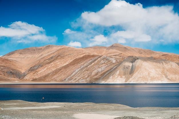 Озеро пангонг и гора в лех ладакх, индия