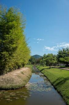 池と公園の通路