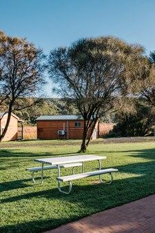 庭の白いベンチ