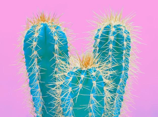 ピンクのトレンディな熱帯ネオンサボテンの植物