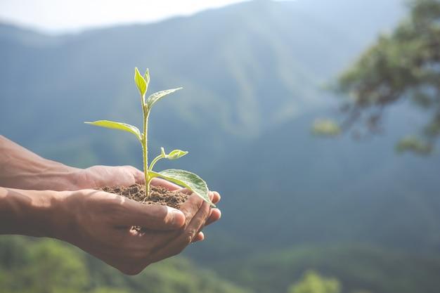 子供のための庭の環境保全。